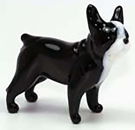 Glas Boston Terrier